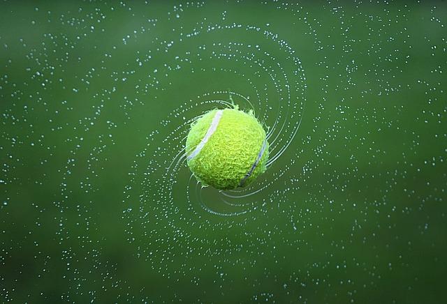 Punta del tappeto erboso e punta del tennis
