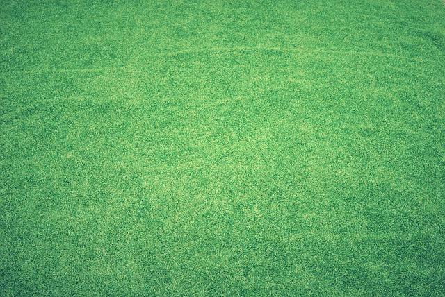 Campi da tennis in erba sintetica non sono solo lì per scopi decorativi
