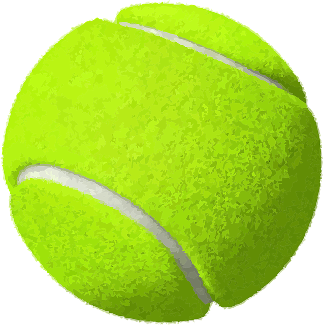 Tennis Essentials – Physical and Mental