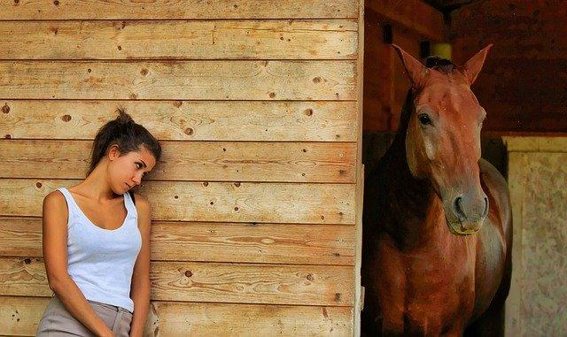Come governare correttamente il tuo cavallo